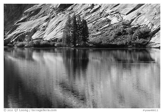 Trees and granite slabs reflected, Merced Lake. Yosemite National Park (black and white)
