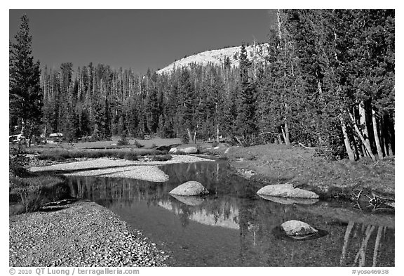 Stream in Long Meadow. Yosemite National Park (black and white)