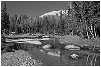 Stream in Long Meadow. Yosemite National Park ( black and white)