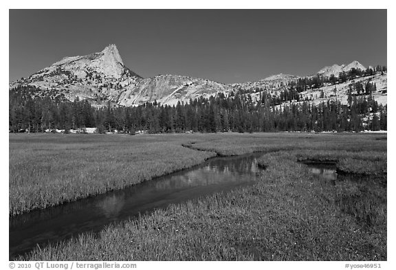 Meadow, stream, Cathedral range. Yosemite National Park (black and white)