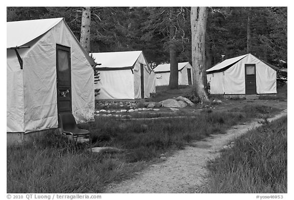 Tuolumne Lodge tents. Yosemite National Park (black and white)