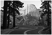 Half-Dome seen from road near Washburn Point. Yosemite National Park ( black and white)