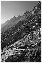 Shepherd Crest, late afternoon. Yosemite National Park ( black and white)