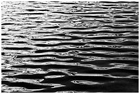 Ripples on Roosevelt Lake. Yosemite National Park ( black and white)
