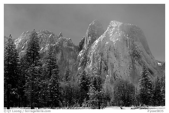 Cathedral rocks after a snow storm, morning. Yosemite National Park (black and white)