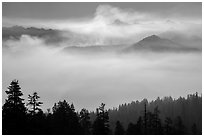 Valley below Clark Range filled with smoke. Yosemite National Park ( black and white)