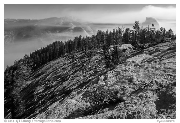 Smoke-filled valley and Half-Dome from Sentinel Dome. Yosemite National Park (black and white)