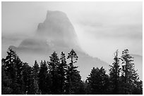 Half-Dome, clearing fog. Yosemite National Park ( black and white)