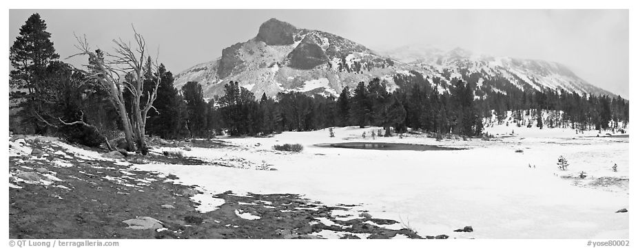 Tioga Pass, peaks and snow-covered meadow. Yosemite National Park (black and white)