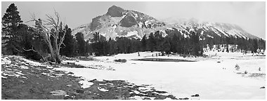 Tioga Pass, peaks and snow-covered meadow. Yosemite National Park (Panoramic black and white)