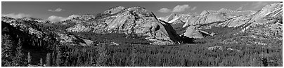Granite domes and Tenaya Lake. Yosemite National Park (Panoramic black and white)