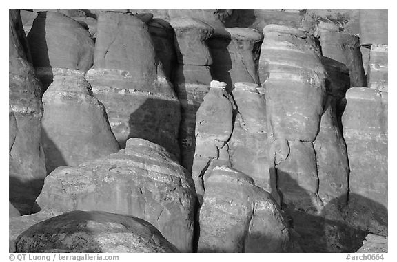 Sandstone fins at Fiery Furnace, sunset. Arches National Park (black and white)