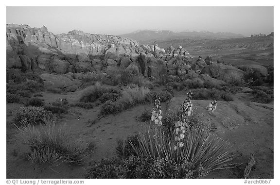 Fiery Furnace, and La Sal Mountains, dusk. Arches National Park (black and white)