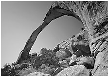 Landscape Arch, morning. Arches National Park, Utah, USA. (black and white)