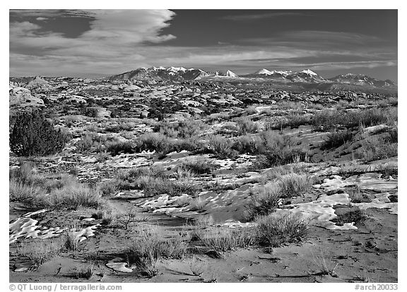 Petrified dunes, ancient dunes turned to slickrock, and La Sal mountains, winter afternoon. Arches National Park (black and white)