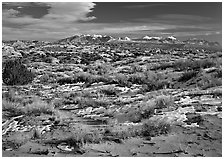 Petrified dunes, ancient dunes turned to slickrock, and La Sal mountains, winter afternoon. Arches National Park ( black and white)