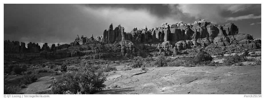 Sandstone pinnacles, Klondike Bluffs. Arches National Park (black and white)