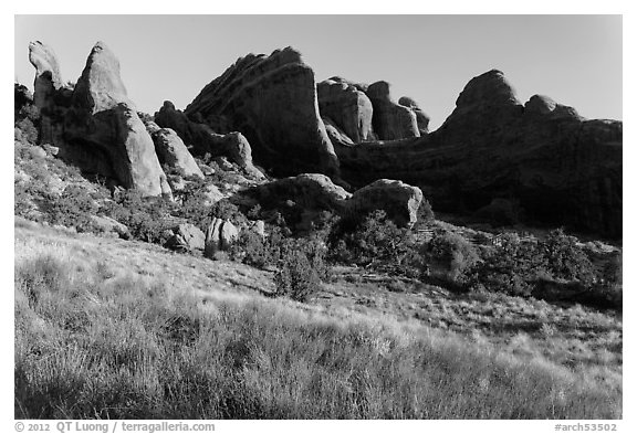 Fins in Devils Garden. Arches National Park (black and white)