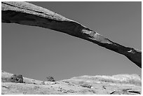 Span of Landscape Arch, longuest natural arch. Arches National Park ( black and white)