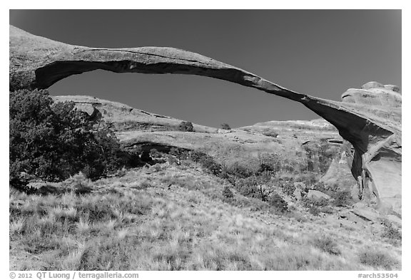 290 feet span of landscape Arch. Arches National Park (black and white)