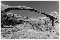 290 feet span of landscape Arch. Arches National Park ( black and white)