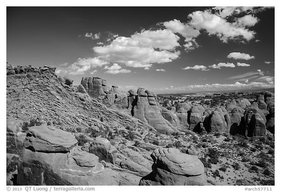 Entrada sandstone fins. Arches National Park (black and white)