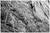 Side canyon wall, Long Draw. Black Canyon of the Gunnison National Park ( black and white)