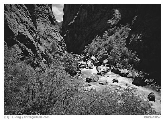 Gunisson River in narrow gorge. Black Canyon of the Gunnison National Park (black and white)