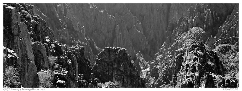 Spires inside canyon. Black Canyon of the Gunnison National Park (black and white)