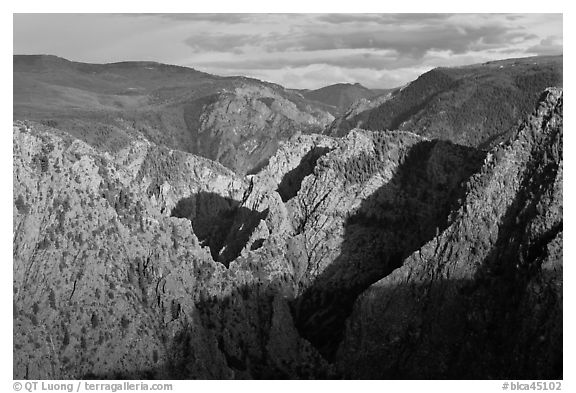 Canyon view from Tomichi Point. Black Canyon of the Gunnison National Park (black and white)