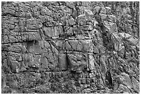 Fractured rock wall. Black Canyon of the Gunnison National Park, Colorado, USA. (black and white)