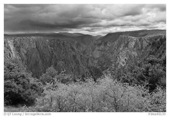 Approaching storm, Tomichi Point. Black Canyon of the Gunnison National Park (black and white)
