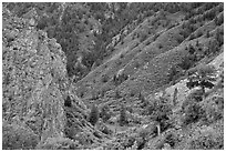 East Portal in spring. Black Canyon of the Gunnison National Park ( black and white)
