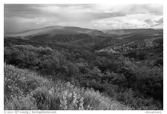 Rolling hills and storm in autumn. Black Canyon of the Gunnison National Park (black and white)