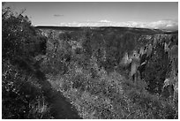 Oak Flat Trail. Black Canyon of the Gunnison National Park ( black and white)