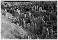 Silent City dense cluster of hoodoos from Bryce Point, sunrise. Bryce Canyon National Park ( black and white)