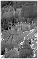 Snowy ridges and hoodoos, Bryce Amphitheater, early morning. Bryce Canyon National Park ( black and white)