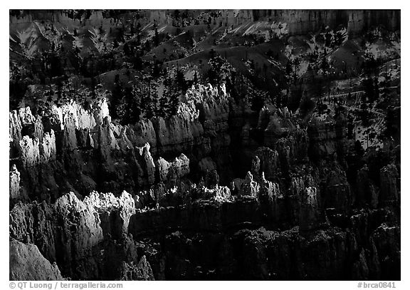 Light and shadows, from Sunset Point, late afternoon. Bryce Canyon National Park (black and white)