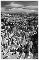 Silent City in Bryce Amphitheater from Bryce Point, morning. Bryce Canyon National Park ( black and white)