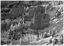 Rock spires and snow seen from Sunrise Point in winter, early morning. Bryce Canyon National Park ( black and white)