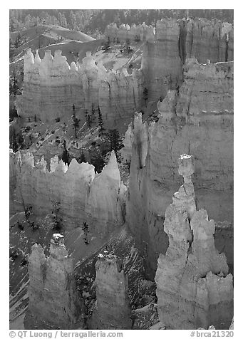Thor Hammer and hoodoos, mid-morning. Bryce Canyon National Park (black and white)