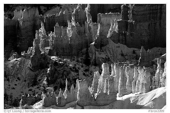 Hoodoos and shadows from Sunrise Point, early winter morning. Bryce Canyon National Park (black and white)
