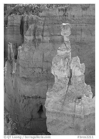 Thor's Hammer. Bryce Canyon National Park (black and white)