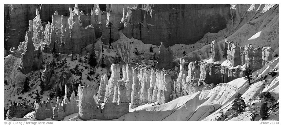 Hoodoos and snowy slopes, early morning. Bryce Canyon National Park (black and white)