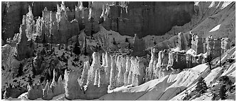 Hoodoos and snowy slopes, early morning. Bryce Canyon National Park (Panoramic black and white)