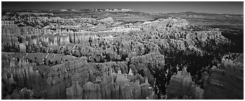 Innumerable brighly colored free-standing hoodoos aligned in amphiteater. Bryce Canyon National Park (Panoramic black and white)