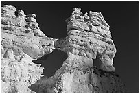 Hoodoos and windows. Bryce Canyon National Park ( black and white)