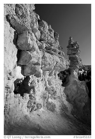 Pink limestone hoodoos, Water Canyon. Bryce Canyon National Park (black and white)