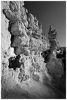 Pink limestone hoodoos, Water Canyon. Bryce Canyon National Park ( black and white)