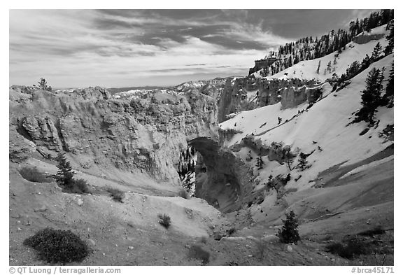 Natural Bridge in winter. Bryce Canyon National Park (black and white)